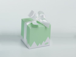 BOITE CUBE norDic vert